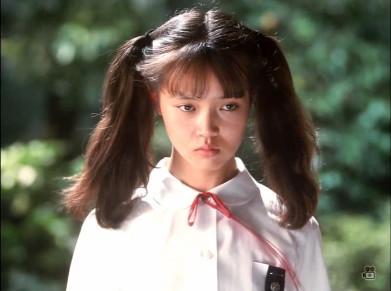 「マルサの女2」の登場人物(俳優名)。奈々役は誰?